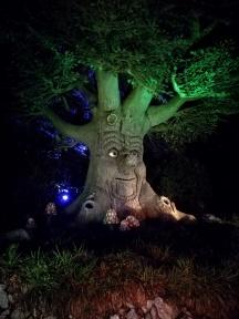 Sprookjesboom vertelt...