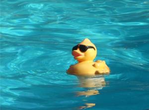 Storytime: mijn vrijwilligersbaantje bij ZwemclubGehandicapten