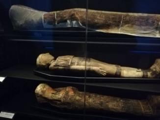 echte(!!) mummies